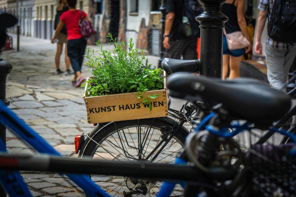Insider tip Vienna, bike sharing
