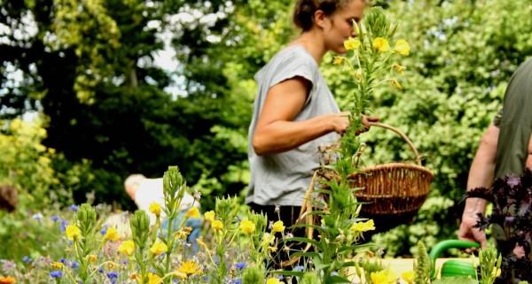 Woman works in the Himmelbeet Community Garden Berlin