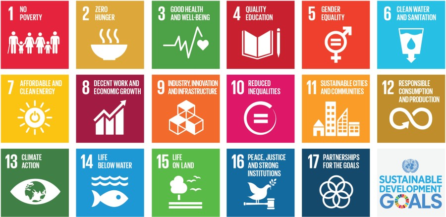 17 UN Sustainable Development Goals, Agenda 2030 Ziele