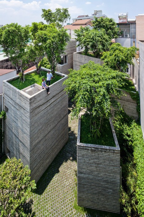 Homes for our time wooden high-rise with green roofs