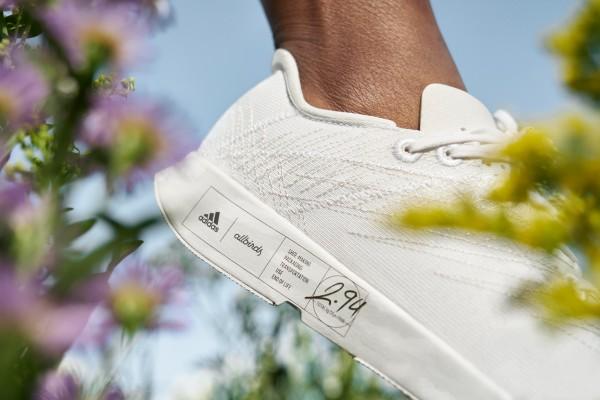 Adidas Allbirds Sneaker Close up