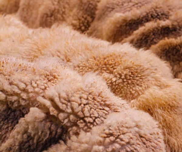 Wolle als nachhaltige materialien